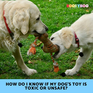 How do I know if my Dog's Toy is Toxic or Unsafe?