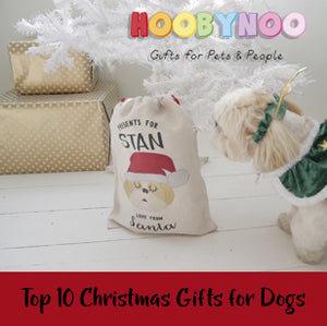 Top 10 Chrismtas Gifts for Dogs