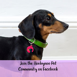 Hoobynoo Pet Community on Facebook