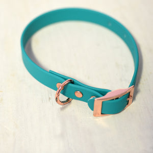 Waterproof Biothane Dog Collar - Aqua