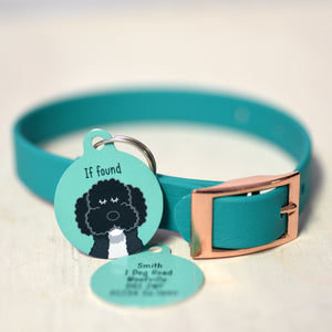 Personalised Dog Collar and Id Tag