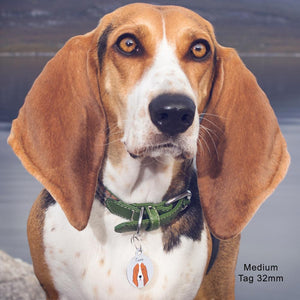 Basset Hound Dog ID Collar Tag  - Hoobynoo - Personalised Pet Tags and Gifts
