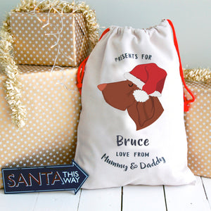 Bracco Italiano Personalised Christmas Present Sack  - Hoobynoo - Personalised Pet Tags and Gifts