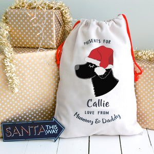 Curly Coated Retriever Personalised Christmas Present Sack  - Hoobynoo - Personalised Pet Tags and Gifts
