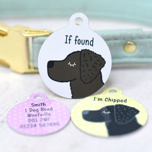 Curly Coated Retriever Personalised  Dog Tag