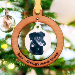 Christmas Decoration Pet Memorial Photo