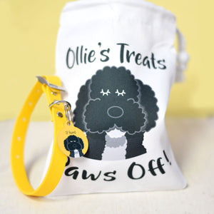 Personalised Dog Gift set - Collar, Tag and Treat Bag