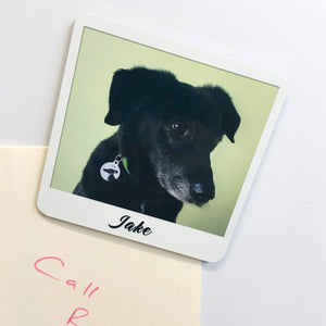 Personalised Retro Photo Fridge Magnet  - Hoobynoo - Personalised Pet Tags and Gifts