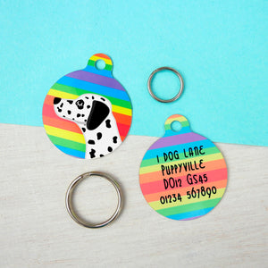 Dalmatian Personalised Rainbow Pet ID Tag