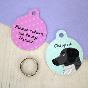 Stabyhoun Personalised Dog ID Tag