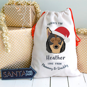 Swedish Valhund Personalised Christmas Present Sack