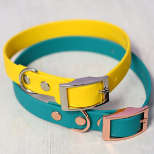 Waterproof Biothane Dog Collar