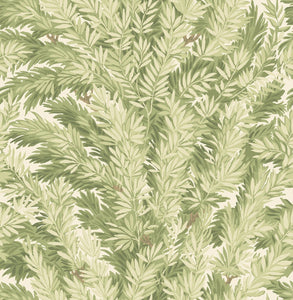 Olive  Florencecourt Wallpaper