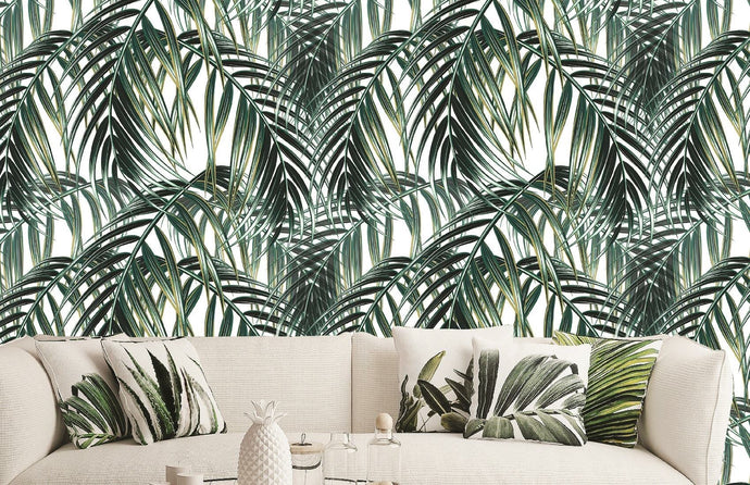 Tropical jungle  Palm leaf