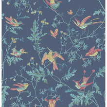 Indigo Multi-color Hummingbirds Wallpaper