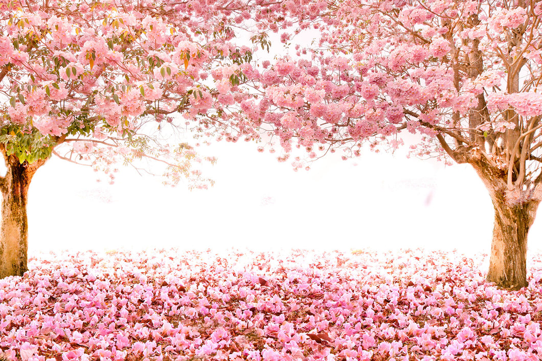 Pink floral trees