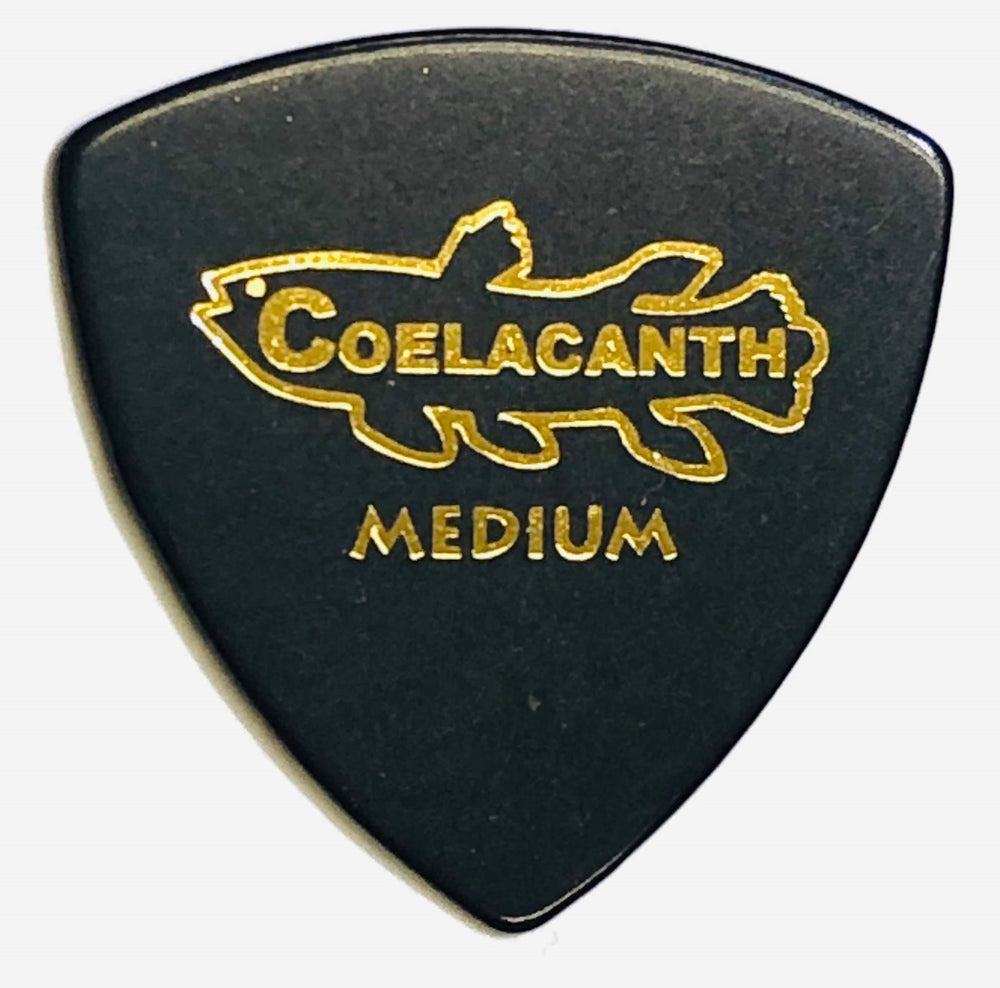 "[Triangle Medium 0.8] Ebonite Guitar Pick ""COELACANTH"""