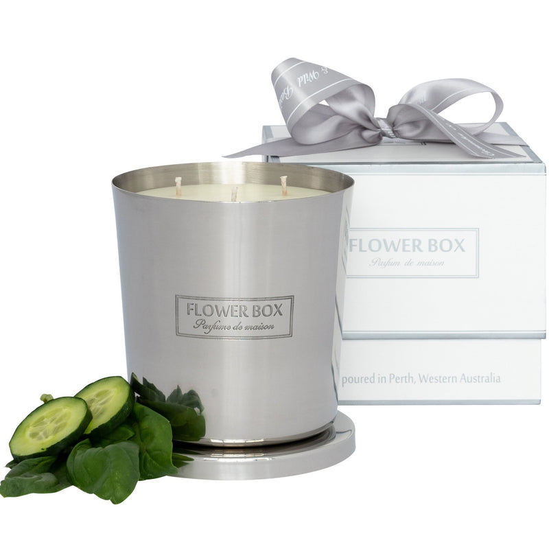 Cucumber & Wild Basil 1kg Silver Candle