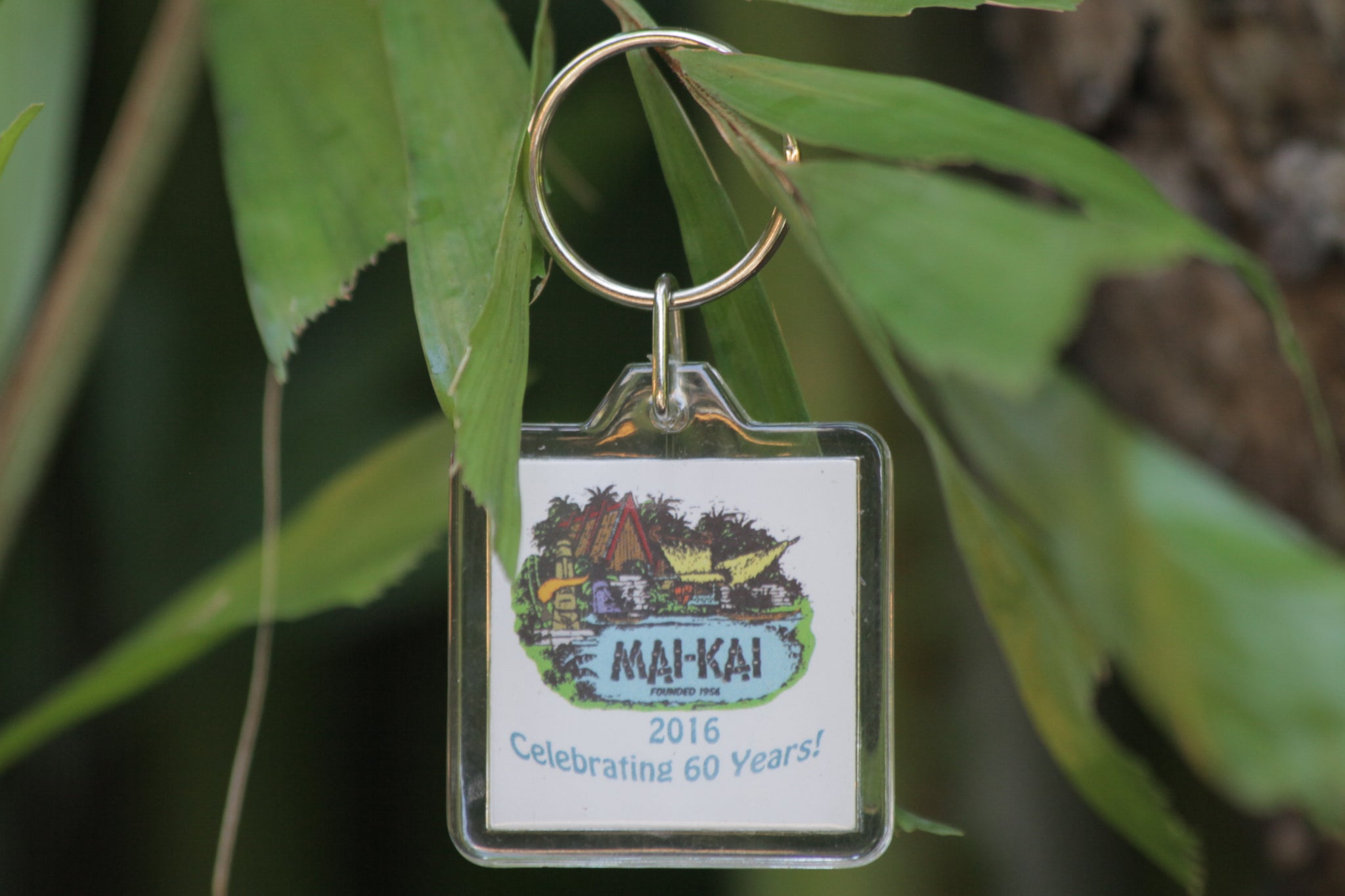 Mai-Kai Key Chain - 60th Anniversary Edition