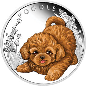 2018 Tuvalu 50c Puppies – Poodle 1/2oz Silver Proof Coin
