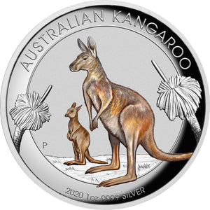 2020 $1 Kangaroo High Relief Coloured 1oz Silver Proof