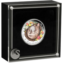 2021 50c Dreaming Down Under – Kangaroo 1/2oz Silver Proof
