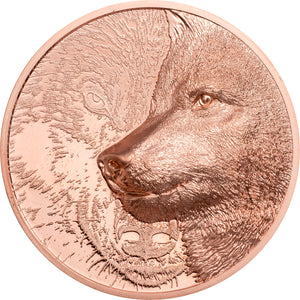 2021 Mongolia 250Tg Mystic Wolf 50g Copper Coin
