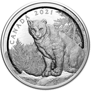 2021 Canada $50 Multi-layered Cougar 100g Silver Proof