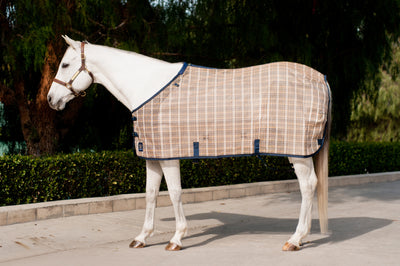 Kensington Traditional Fit Fly Sheet - 2015 - RM Tack & Apparel