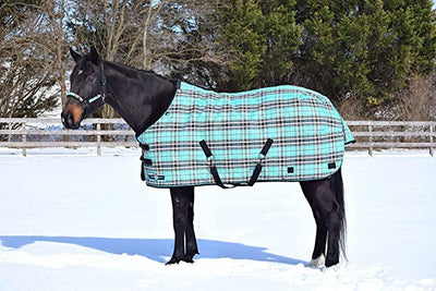 Kensington 300g SuperMesh Horse Turnout Blanket