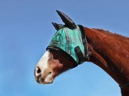 Kensington Protective Products Fly Mask With Ears And Fleece Trim - RM Tack & Apparel