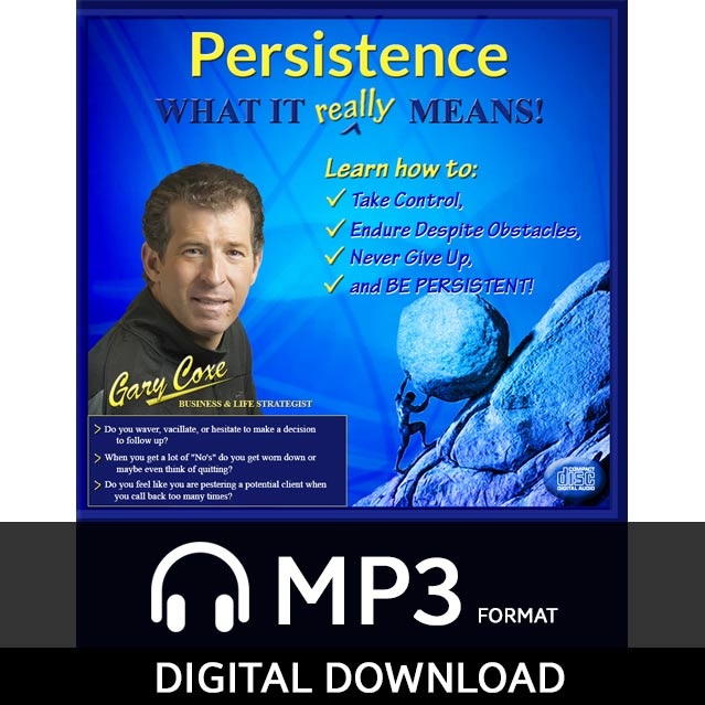 Persistence – What It Really Means!