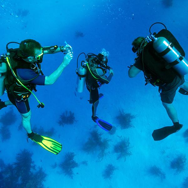 PADI Semi-Private Open Water Diver Course