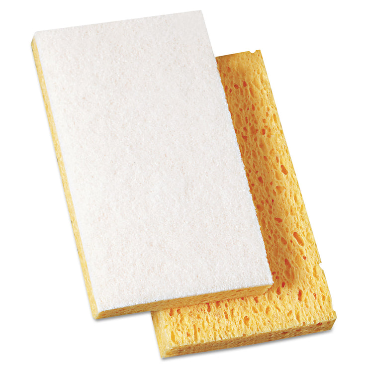 Boardwalk Scrubbing Sponge, 3 3/5