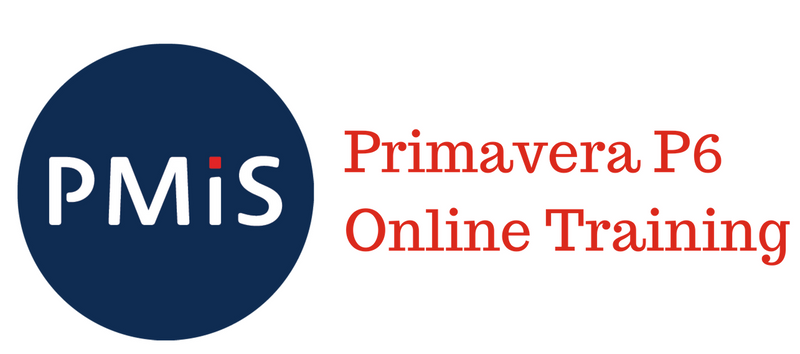 P6 Online Training