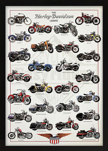 The Harley Davidson Legend Framed Artwork