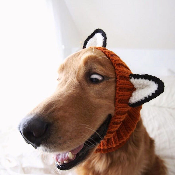 Dog Ear Warmer, Fox