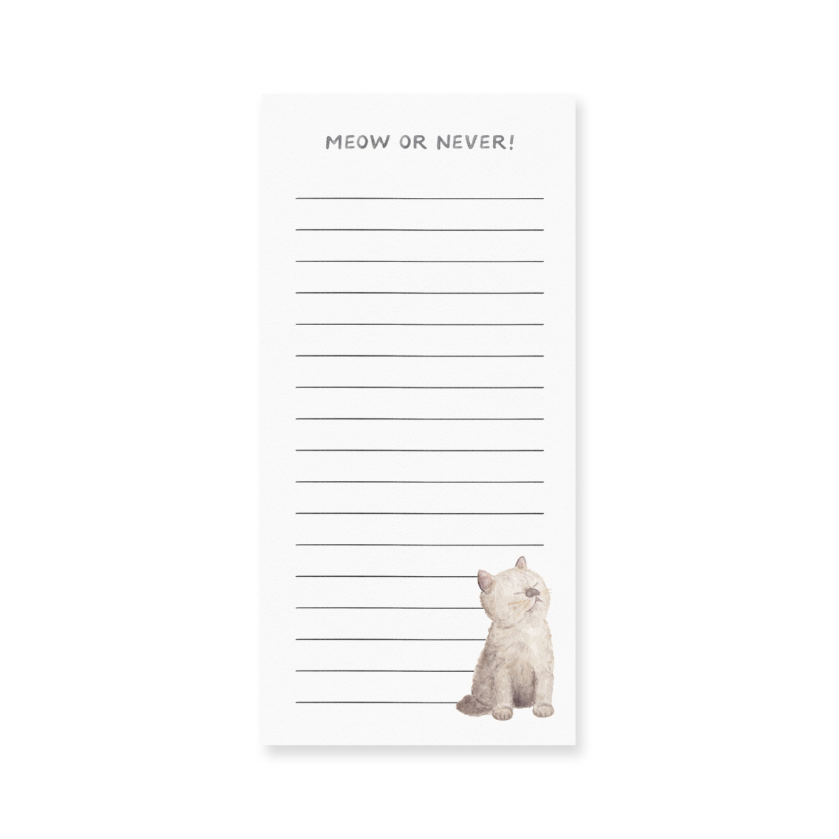 Notepad, Meow Or Never