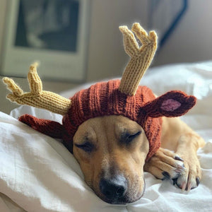 Dog Ear Warmer, Reindeer