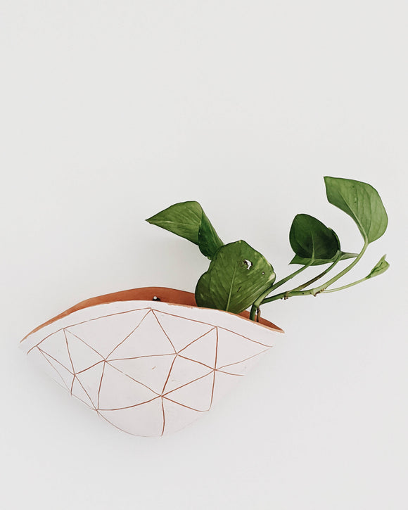 Geotriangle Wall Planter
