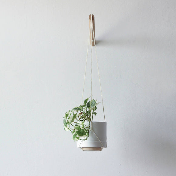 Natural Wall Plant Hanger