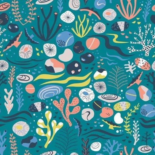 Rock Pool by Rosalind Maroney  for Dashwood Studio