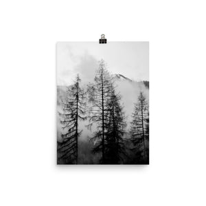 Black and white foggy trees print