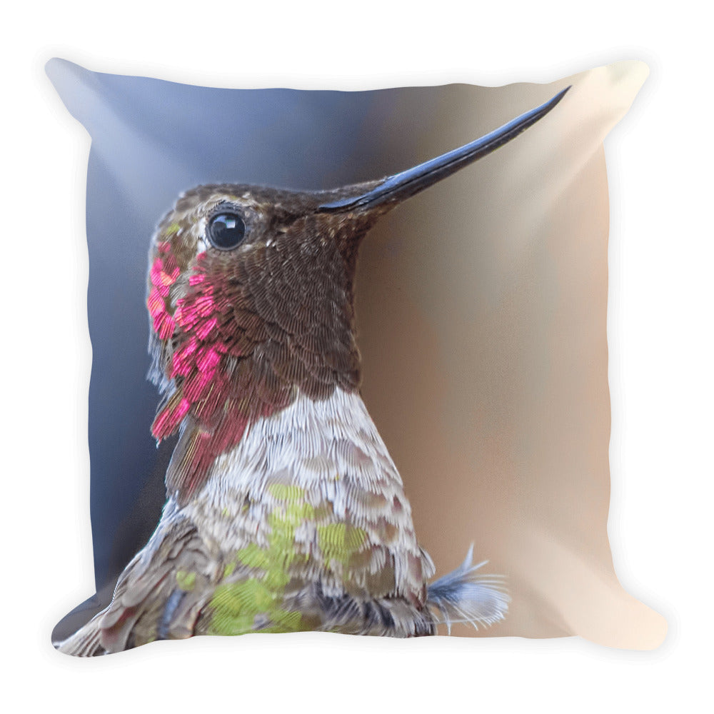 Hummingbird cushion