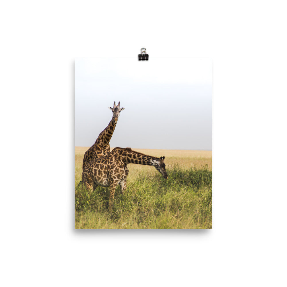 Giraffe friends print
