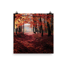 Autumn woods print - Pretty Ventura