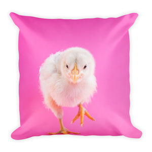 Pink chick cushion