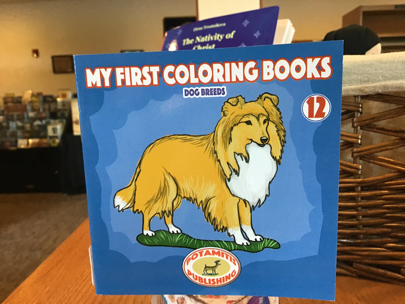 First Coloring Book 12