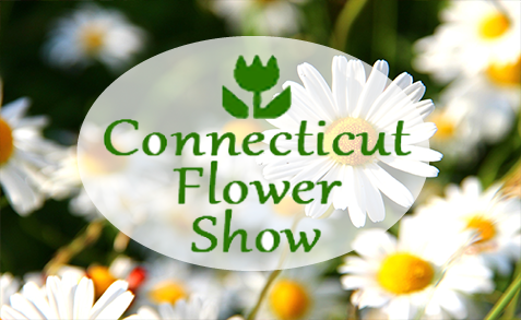 Connecticut Flower Show
