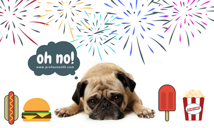 Fourth of July Cookout Food Could Mean Diarrhea For Your Dog!